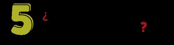 05 - PREG-01
