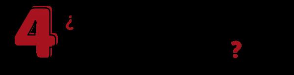 04 - PREG-01